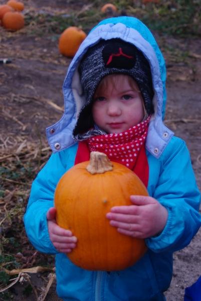 october-2012-davison-thursday-67
